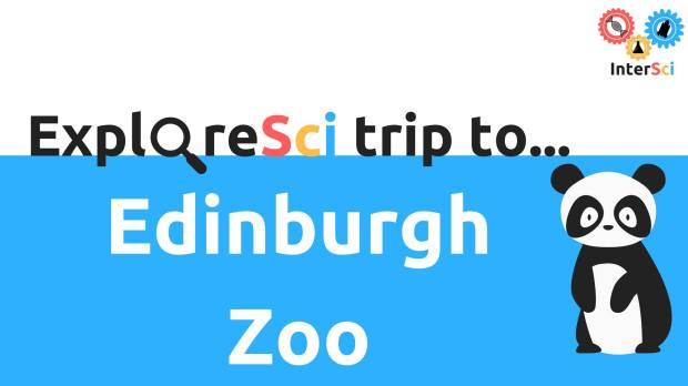 Picture for ExploreSci's trip to Edinburgh Zoo
